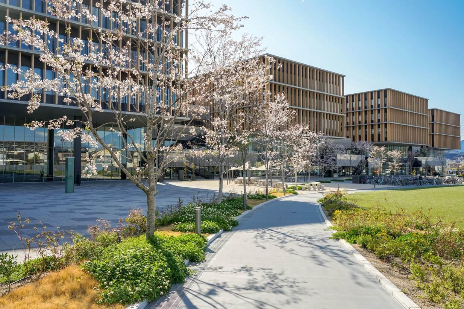 常葉大学 静岡草薙キャンパス